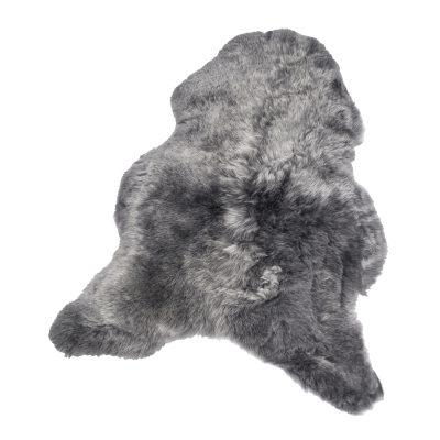 shorthair-lampaantalja-50x100-hopea