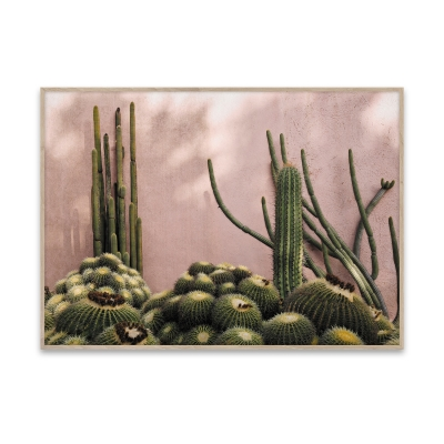 juliste-plants-on-pink-50-x-70