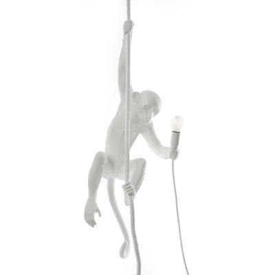 monkey-lamppu-koeydellae