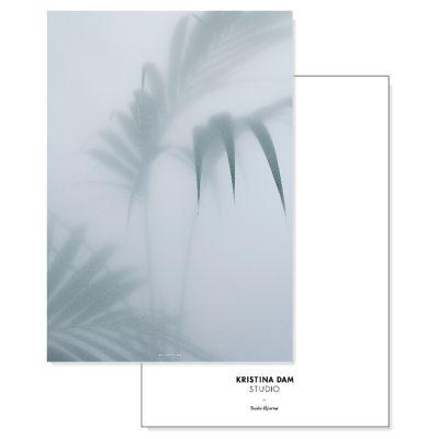 palm-i-postikortti