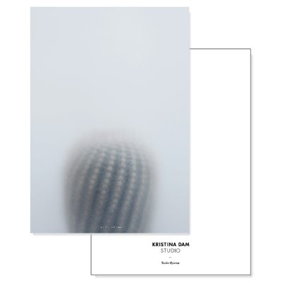 ball-cactus-i-postikortti