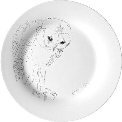 barn-owl-lautanen
